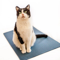 The Yoga Cat Mat Toy: Slate Blue