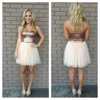 Pink Ballerina Sequin & Tulle Strapless Dress