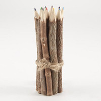 Twig Color Pencils, Set of 12 - World Market