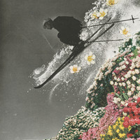 Spring Skiing Stretched Canvas by Sarah Eisenlohr