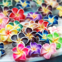 12 Pcs Diy MIX Assorted Bundle Set X 15mm Small Mini Tiny Polymer Clay Flowers Cabochon Flat Back -Pendant Nail Art Craft Decoration (FL17M)