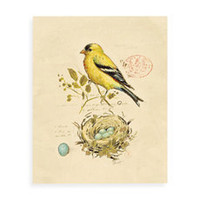 Gilded Yellow Songbird Wall Art - Bed Bath & Beyond