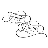 Carpe Diem decorative wall decal wall art wall sticker. WW4033