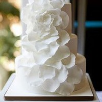 El Paso Weddings . Belle the Magazine: Edible Beauties