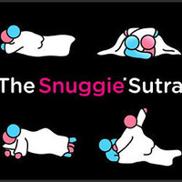 Snuggie Sutra (Book) - The Awesomer