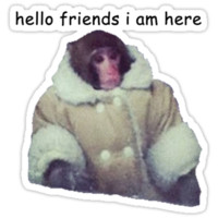hello friends i am here: ikea monkey